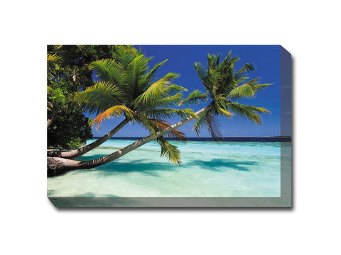 Palms Duo Canvas Wall Art