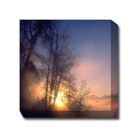 Serene Sunrise Outdoor Canvas Art