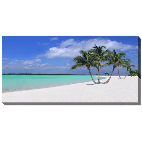 Sugar Sand Outdoor Canvas Art - Outdoor Art Pros