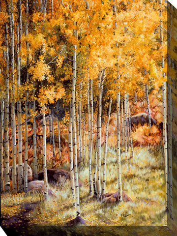 Hidden Gold Outdoor Canvass Art - Outdoor Art Pros