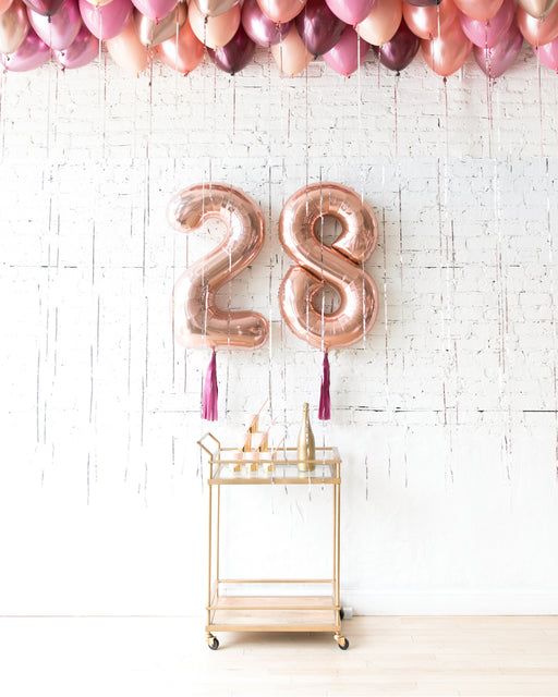 Berry Blush - Number Foils & Ceiling Balloons Set
