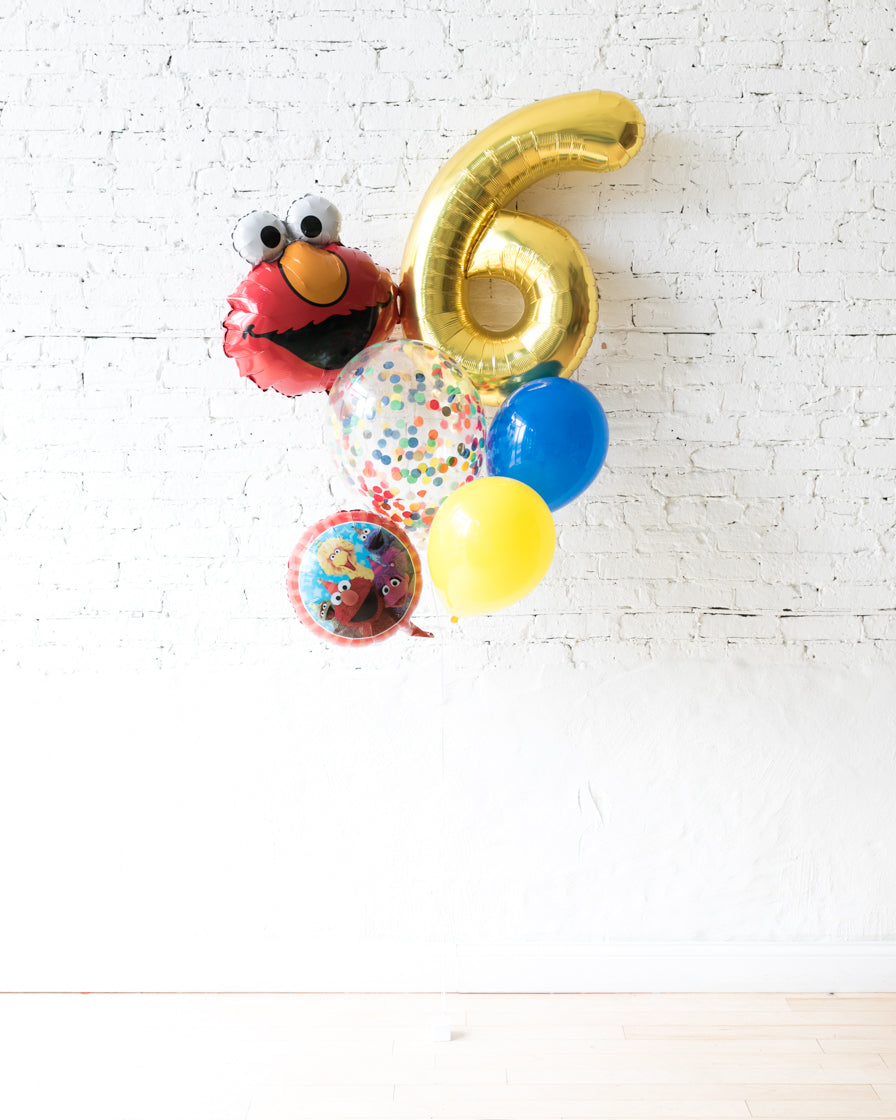 GIFT-Sesame Street Theme Number Birthday Bouquet
