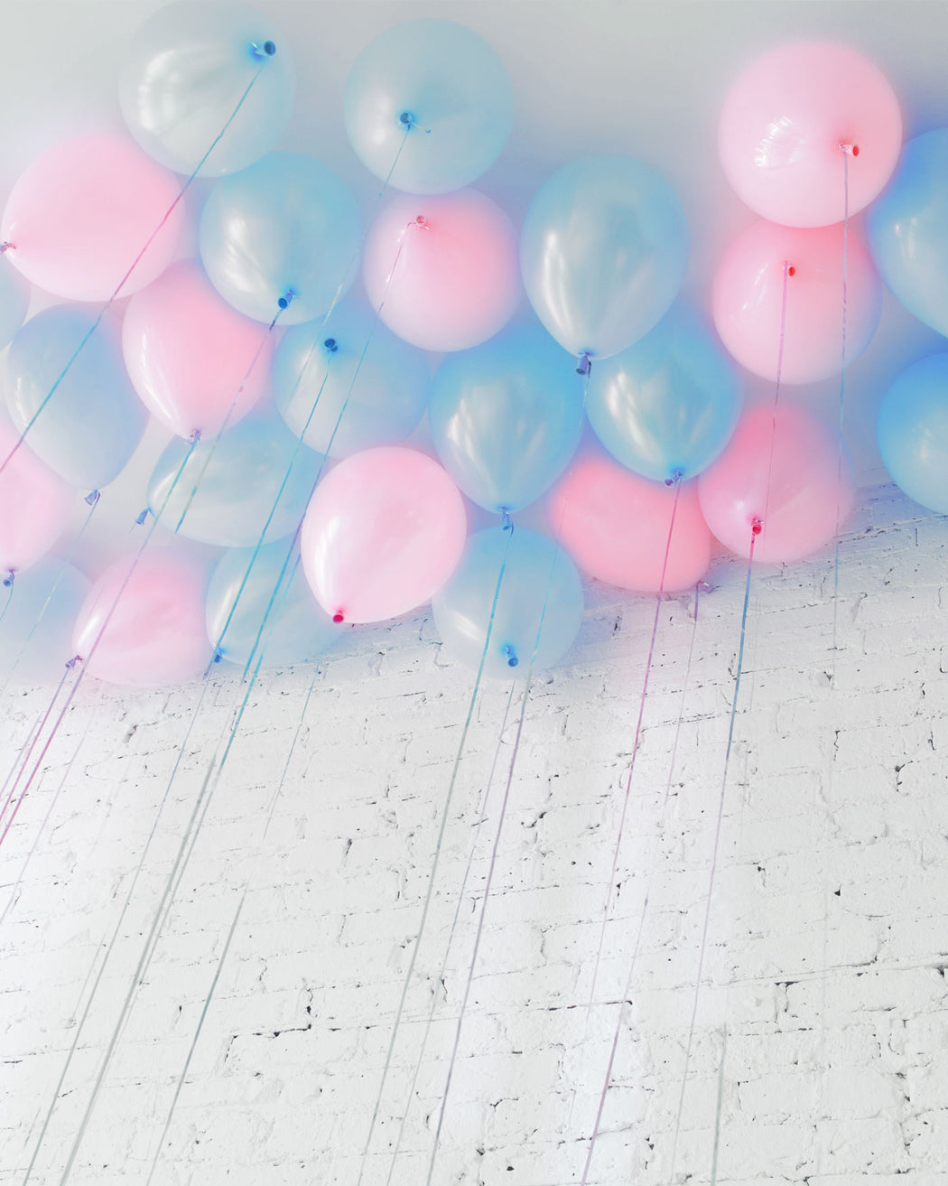 Gender Reveal - 11in Ceiling Balloons - set of 25