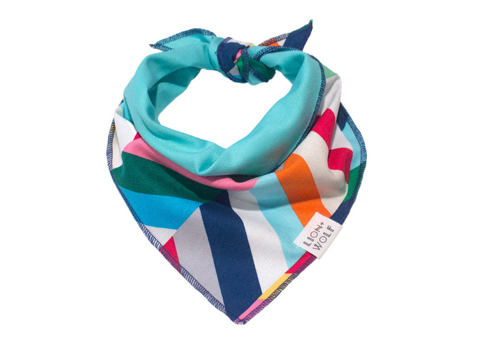 CHEVRON DOG BANDANA - TECHNICOLOR + AQUA