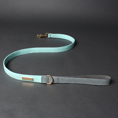 Neoprene Leash Mint