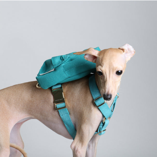 Backpack with harness | Mint