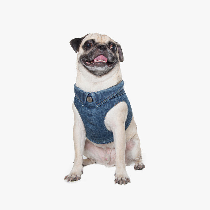 Denim Vest Harness Medium blue