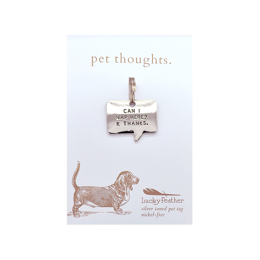 Can I Nap Here Pet Tag
