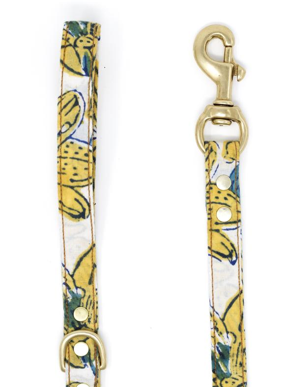 Endless Summer leash