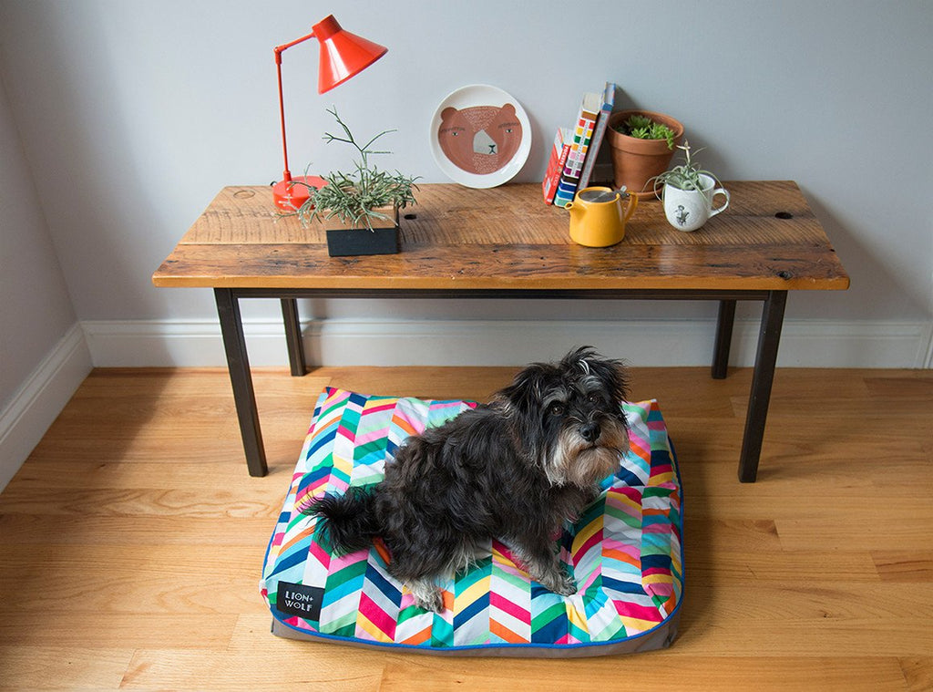 CHEVRON DOG BED – TECHNICOLOR