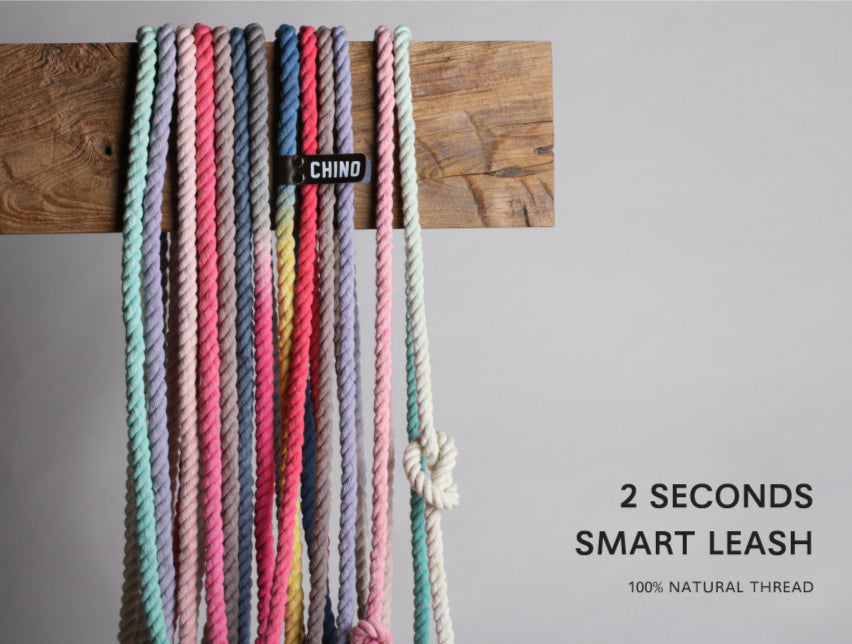 Smart leash | Hot Pink & Cocoa Powder