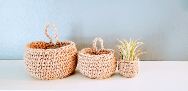 Set of 3 Small Hanging Baskets & 1 Air Plant