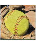 Girls Fast Pitch Softball Party Decoration-Plates & Napkins