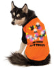 Led Light Up Orange Back Pet Halloween Shirt