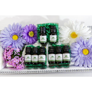 Aromatherapy Essentials Gift Sets