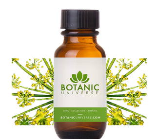 Anethi Essential Oil