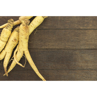 Ginseng Root Botanical Extract