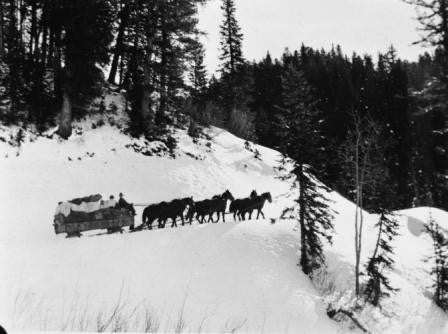 Six Horse Team and Loaded Sled