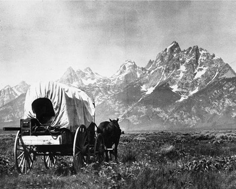 Covered Wagons and Tetons