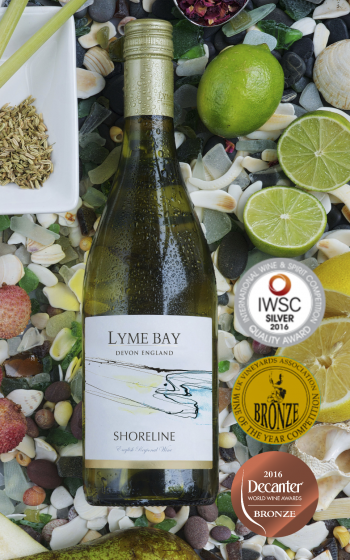 Lyme Bay - Shoreline - Case of 6 - PremiumEnglishWines