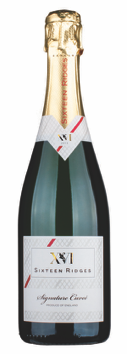 Sixteen Ridges - Signature Cuveé Sparkling 2013 - Case of 6 - PremiumEnglishWines