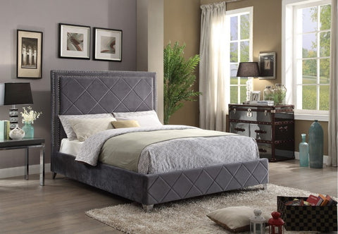 Bed - Grey Velvet Fabric with Nailhead Details  IF-5870
