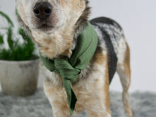 Sage Green Linen Dog Bandana