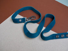Deep Teal Suede Lead