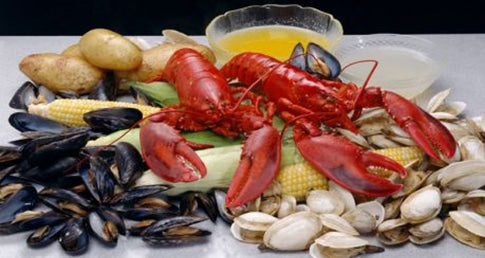 Shellfish - Mussels, Clams, Oysters, Shrimp, Scallops