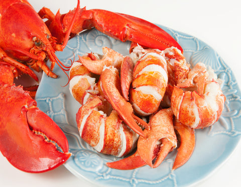 Fresh Maine Lobster Meat