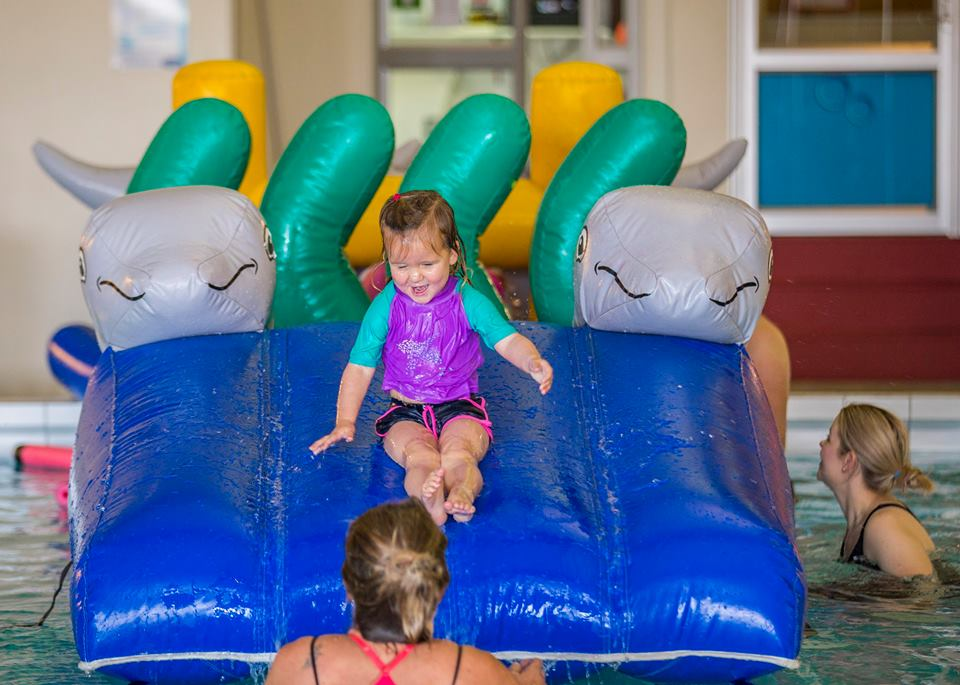 Dolphin Play & Slide - Constant Airflow Obstacle Courses - Aflex Technology