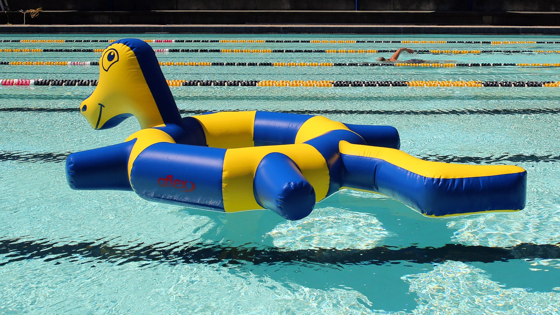 Ringo Sealed Inflatable Pool Toy – Aflex Technology