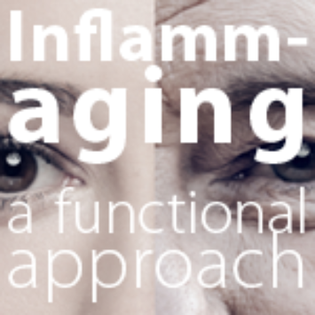 Inflammaging: A Functional Approach