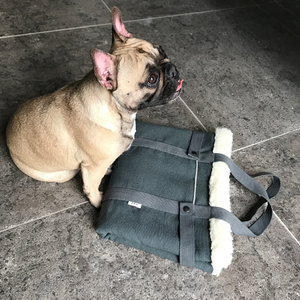 Olive green, stylish dog travel bed