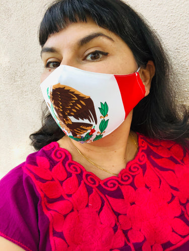 Mexican Flag Face Mask 2 sizes