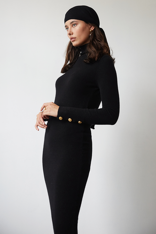 Phoebe Cashmere Turtle Neck Dress