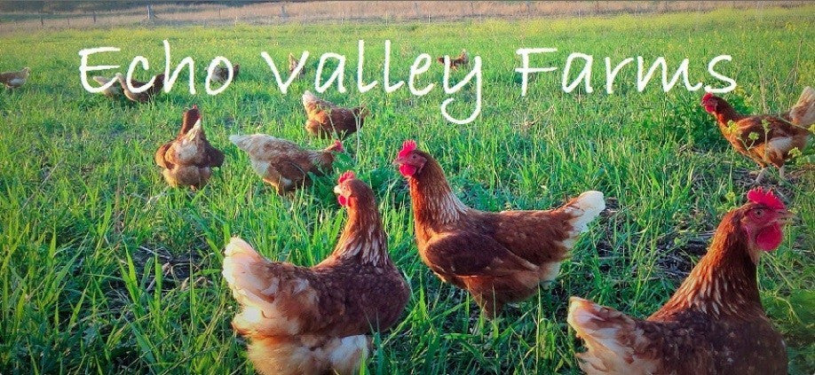 Want to visit Echo Valley Farm with us?