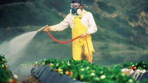 toxic-chemicals-on-food