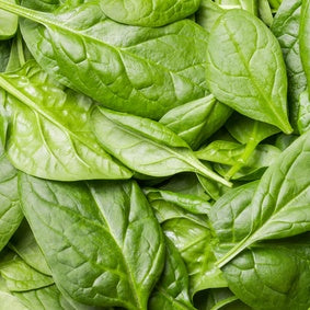 baby spinach organic fruits and vegetables brisbane