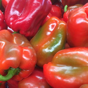 Farm fresh and organice red capsicum available from Spray Free Farmacy's online fruit and vegetable store