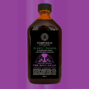 Medicinal_Elderberry_Tonic_organic_local