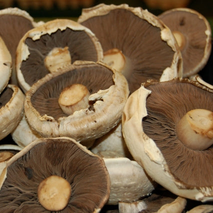 Mushrooms Flat (250gm)