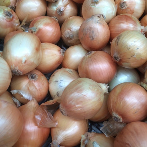Onions - brown (500gm)