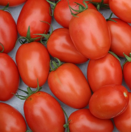 Tomatoes - Roma (500gm)