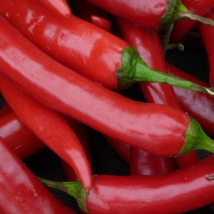 100g of pesticide free long red chillis for collection in Brisbane