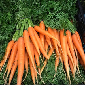 dutch carrots with tops organic vegetables brisbane