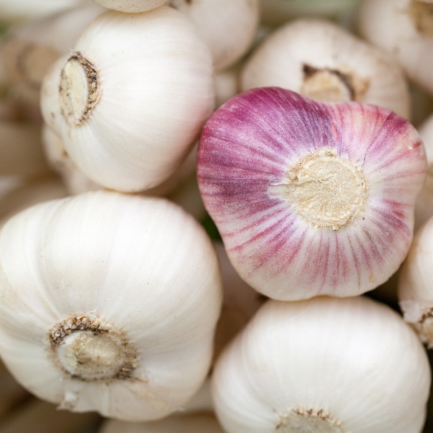 Garlic (150gm)
