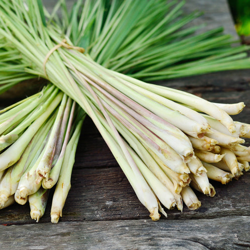Lemongrass (1 stalk)