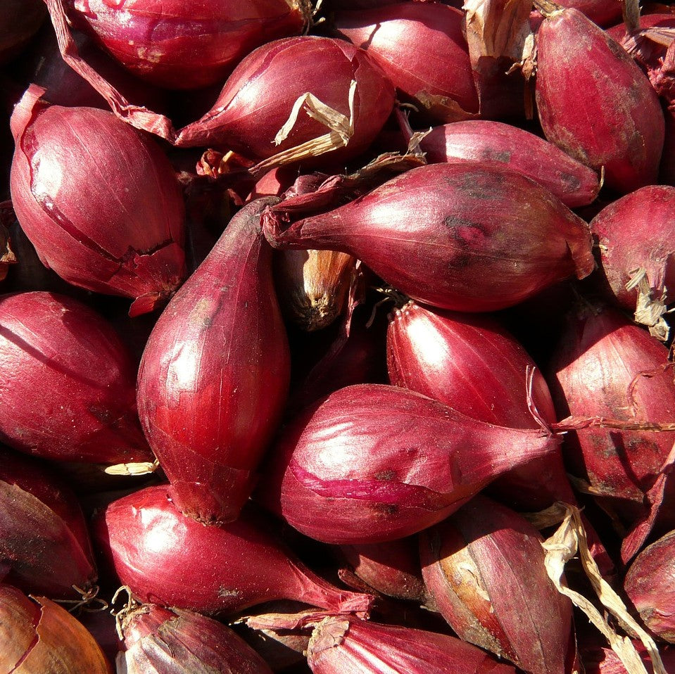 Red Shallots (250gm)