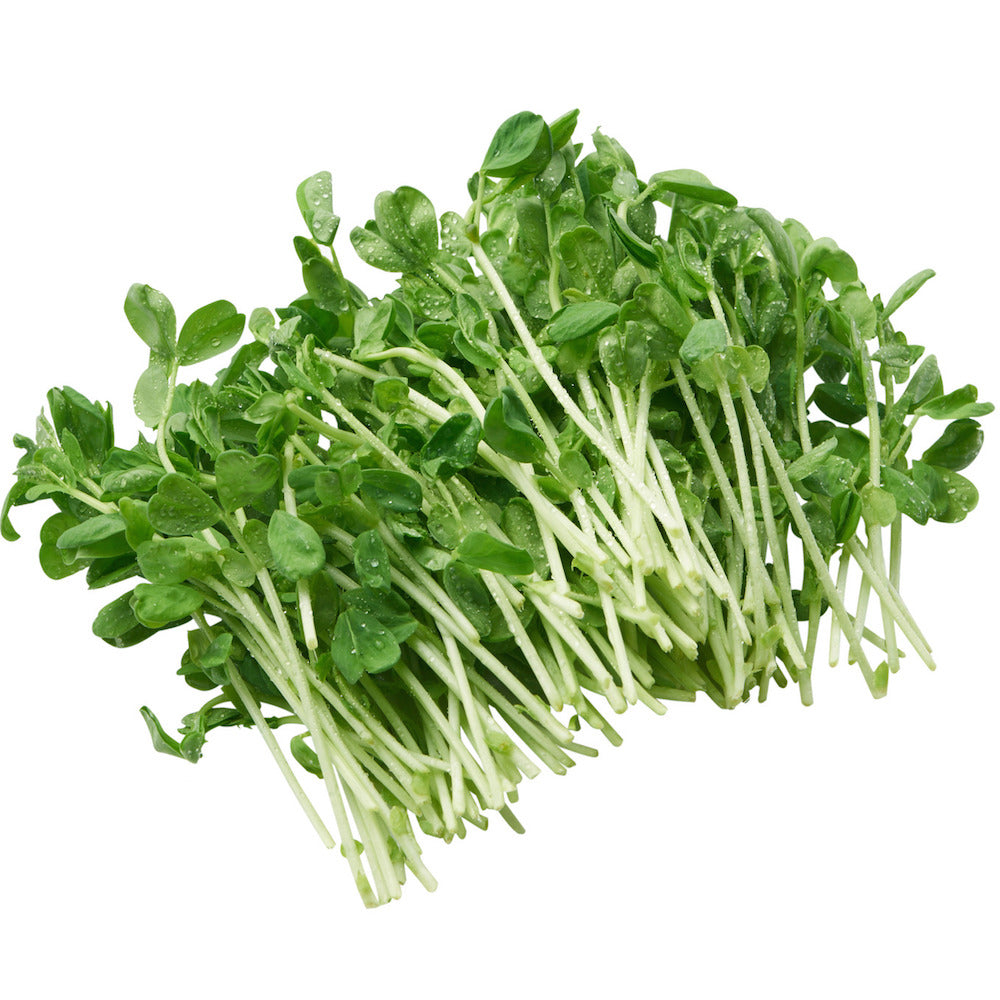 Snow Pea Sprouts (125gm punnet)
